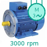 MOTOARE ELECTRICE TRIFAZATE 3000rpm  2poli 230/400V S1 F IE2